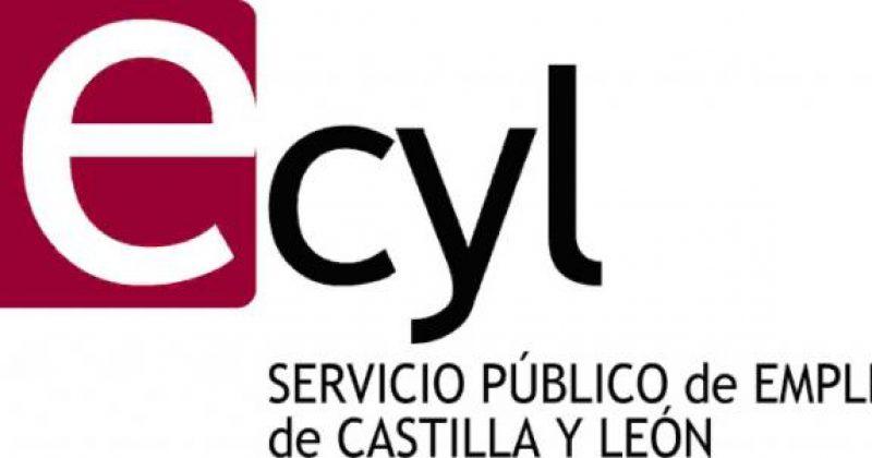 El Ayuntamiento ha contratado temporalmente a dos personas con discapacidad, cofinanciado por el ECyL y el FSE