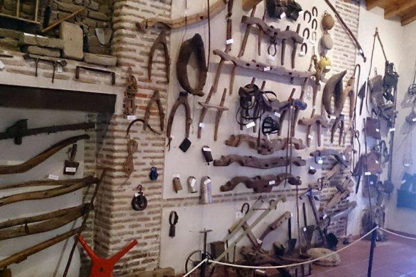 Nuevo Espacio en el Museo de Antaño a Hogaño