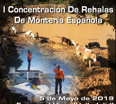 I CONCENTRACIÓN DE REHALAS DE MONTERÍA ESPAÑOLA