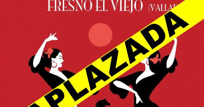 VI Romería Flamenca Fresno el Viejo 2020